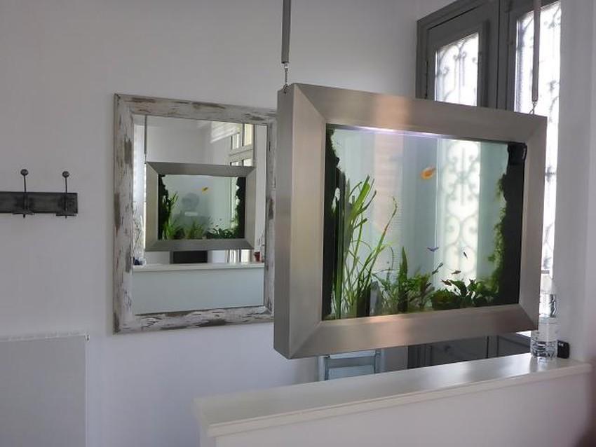 tableau aquarium suspendu révélatio,, particulier, BORDEAUX